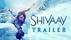 Shivaay Trailer 1 Download