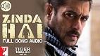 Zinda Hai Tiger Zinda Hai Song Video